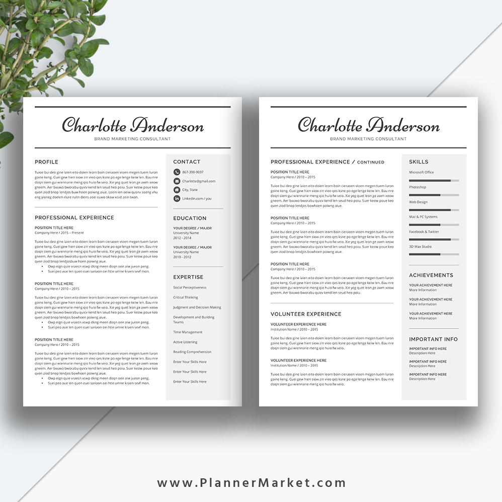 Unique Resume Template, 3 Page CV Template, Word