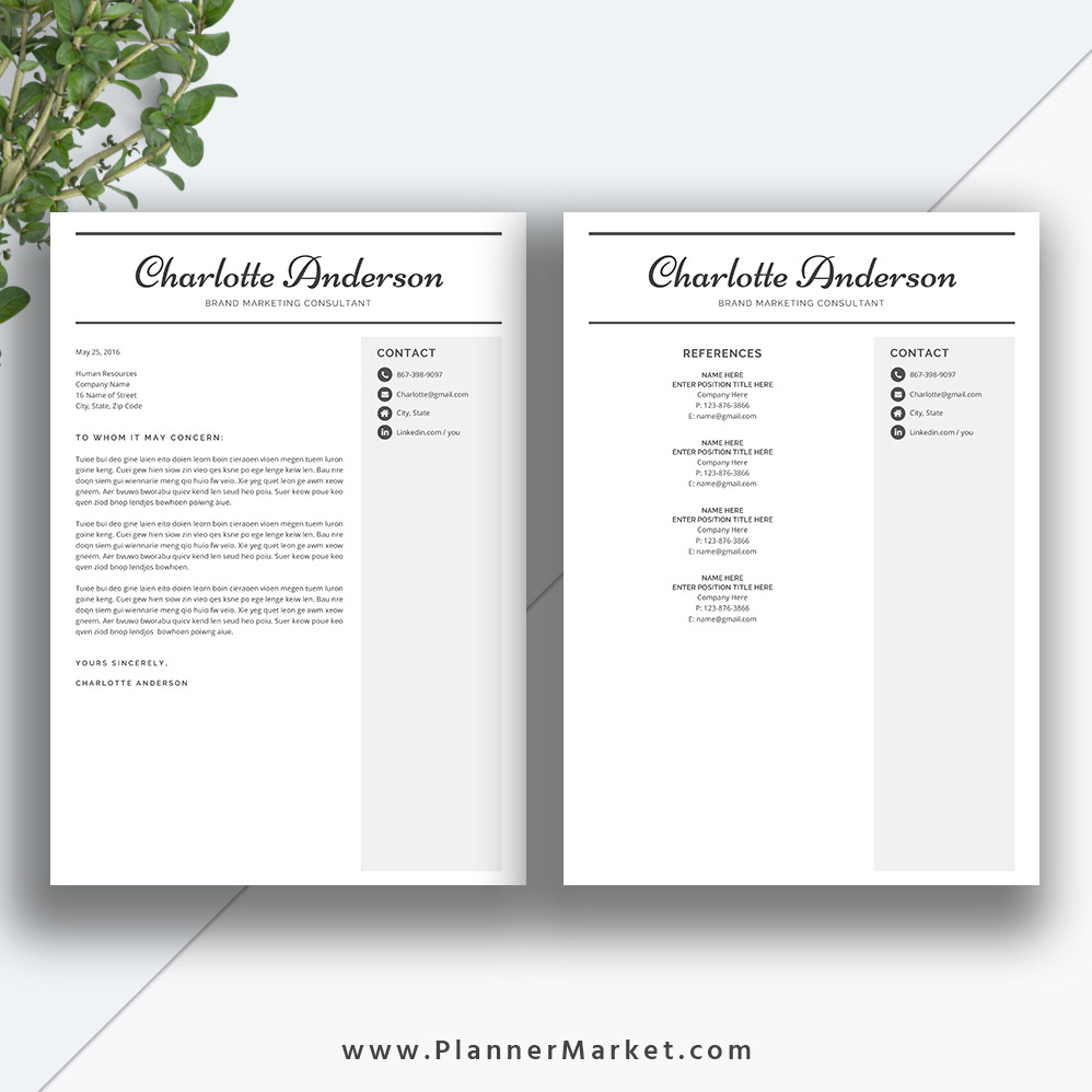 Unique Resume Template  Page Cv Template Word Professional
