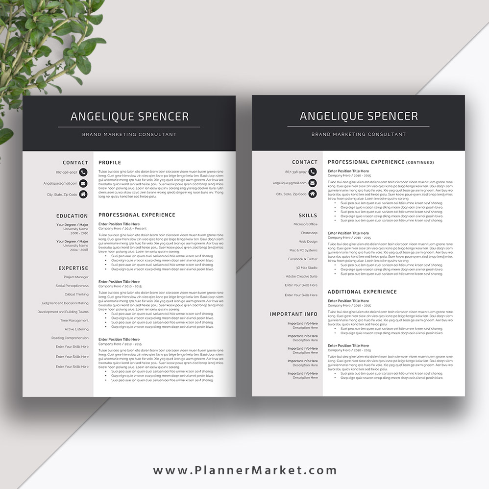 professional resume template  3 page cv template  creative